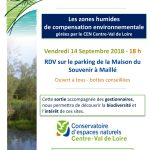 Zones humides à Maillé